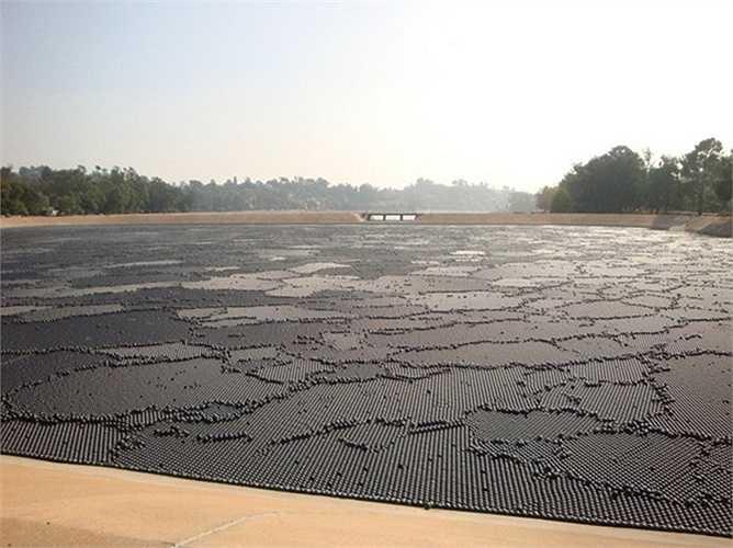 Các kỹ sư từng nghĩ đến giải pháp dùng những tấm che bằng vải dầu hoặc kim loại nhưng chúng quá đắt