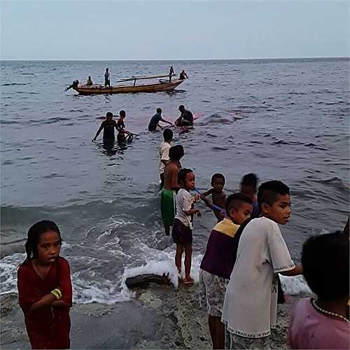 Người dân, trẻ em cùng nhau kéo con vật khổng lồ vào bờ