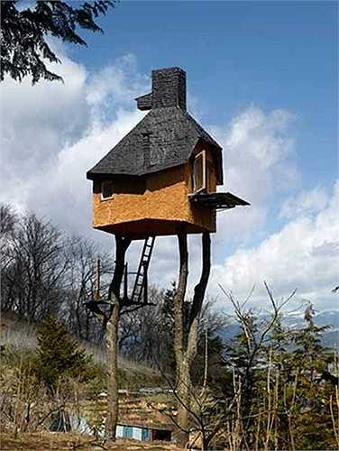 Teahouse, Nhật Bản: Ngôi nhà trên cây độc đáo này cũng được kiến trúc sư Nhật Bản Terunobu Fujimori thiết kế, lấy cảm hứng từ các quán trà truyền thống của Nhật.