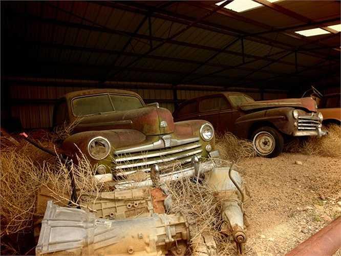 Xe cũ trong trang trại bị bỏ hoang ở Arizona, Mỹ