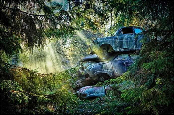 Những chiếc xe cũ phơi nắng, phơi mưa