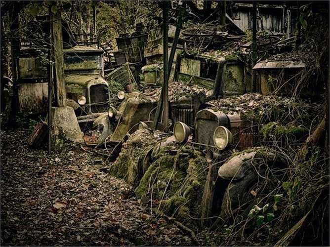 Những chiếc xe bên trong nghĩa địa xe ở Pháp