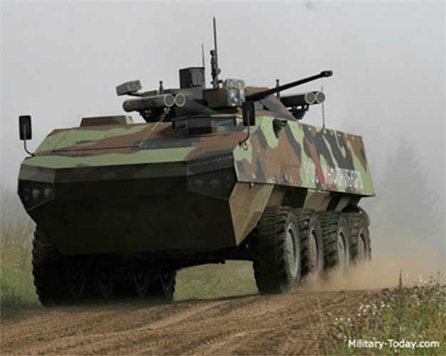 Vũ khí chính của xe bọc thép chở quân BTR Boomerang gồm 1 pháo tự động 30 mm 2A72, súng phóng lựu và các tên lửa dẫn đường chống tăng ATGM Kornet. Phía sau xe có cửa ra vào cho binh lính và 2 động cơ đẩy chân vịt, giúp xe có thể lội nước.