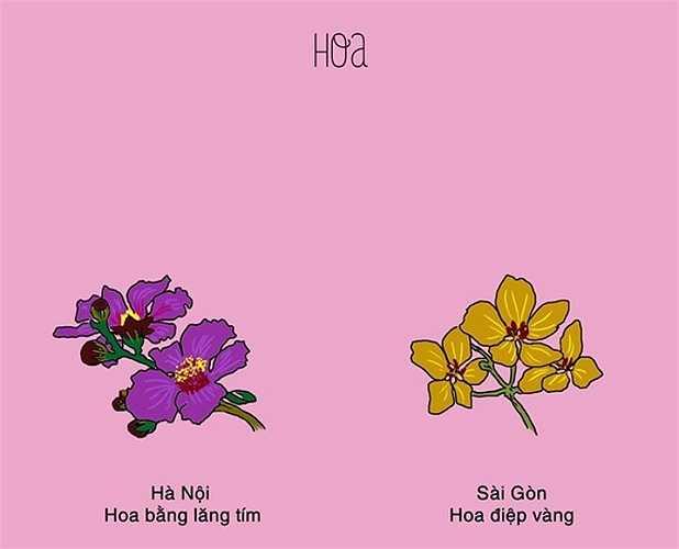 Những ngày tháng 5, ở cả hai miền đều có loài hoa đặc trưng riêng. Bằng lăng tím là loài hoa đặc trưng của mùa hè ở Hà Nội. Còn trong Sài Gòn, những ngày này, hoa điệp vàng nở rộ, khoe sắc vàng trong nắng.