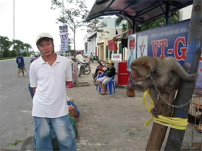 'Bao giờ tôi được tự do' là tên gọi bộ ảnh của anh Trần Hữu Vỹ (ngụ TP Đà Nẵng, giám đốc Trung tâm Bảo tồn đa dạng sinh học Nước Việt Xanh) vừa công bố.