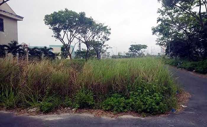 Số phận của làng thể thao Tuyên Sơn với hàng chục ha đất vàng rồi đây sẽ được định đoạt. Bởi, lãnh đạo TP.
