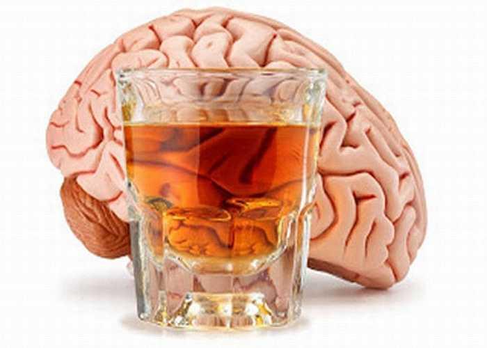 Hủy hoại tế bào não: Lâu nay người ta thường nghĩ rượu chỉ gây hại cho gan, phổi, thận. Nhưng thực chất rượu còn rất độc đối với hệ thần kinh trung ương, não, làm hủy hoại tế bào não.