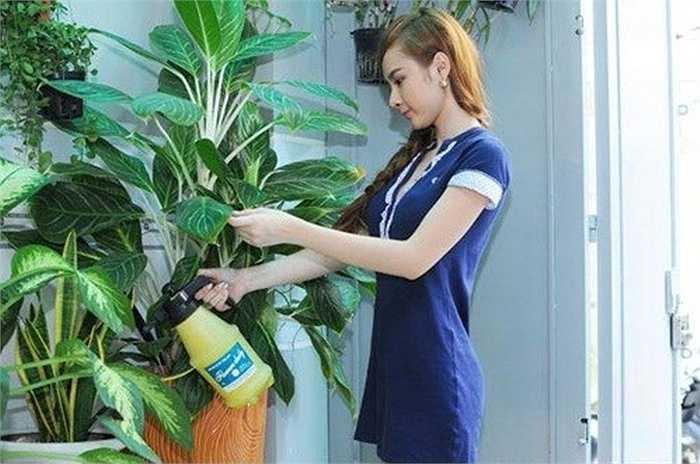 Angela Phương Trinh là chủ 'ảo' ngôi nhà có sân vườn cây xanh tươi tốt này.