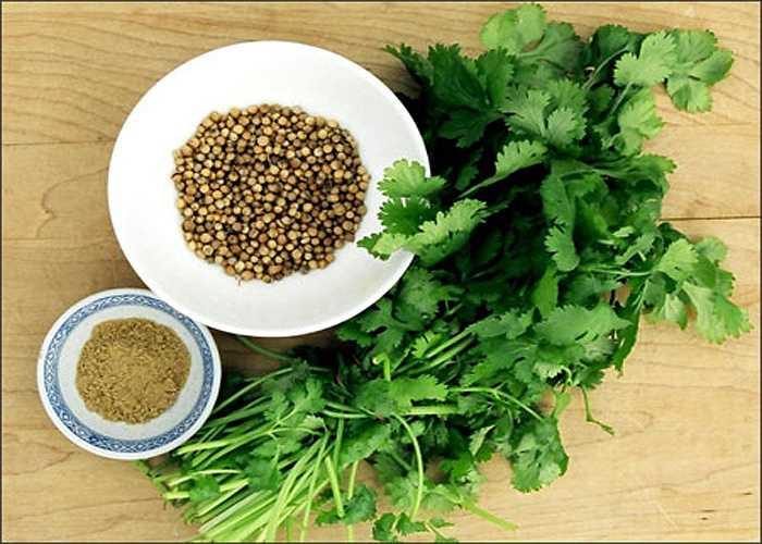 Hạt rau mùi: Một muỗng hạt rau mùi đun sôi cùng 200 ml nước trong 10 phút. Sau đó dùng nước hạt mùi để nguội dùng súc miệng ngày 3-4 lần trong 3 ngày.