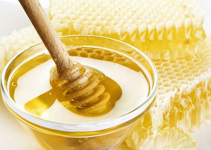Mật ong: Ngậm mật ong hoặc lấy bông tăm thấm mật ong vào chỗ loét. Nhiều nghiên cứu cho thấy dung dịch mật ong 30% có thể ức chế hoặc tiêu diệt hầu hết các loại nấm và vi khuẩn, lại có vị ngọt dễ chịu.