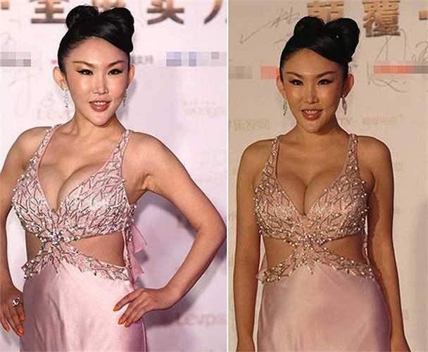 Nữ ca sỹ Chu Thi Nhã bị nhiều người cho rằng đã xấu lại còn muốn gây sự chú ý.