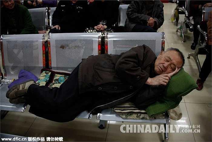 Ảnh chụp ngày 21/3/2011, một nhà đầu tư ngủ ngon lành trên ghế ngay tại sàn chứng khoán sau khi theo dõi bảng niêm yết các chỉ số