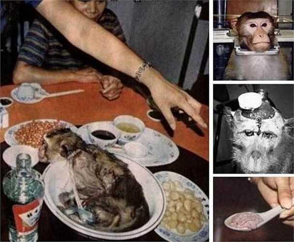 Người Trung Quốc cho rằng, óc khỉ là món ăn, bài thuốc quý giá để tăng cường sức mạnh đàn ông. Do đó, món não khỉ còn đã trở thành món ăn kinh hoàng được giới đại gia bỏ ra rất nhiều tiền để săn đón bởi sự tin tưởng vào khả năng tăng cường tính dục của món ăn.