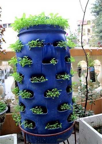 Ống nhựa này là nơi chứa các loại rác thải hữu cơ từ rau cỏ, vỏ hoa quả cho tới vỏ trứng, đầu cá làm thức ăn cho giun. Dưới đáy thùng có một xô để hứng nước từ thùng chảy ra dùng để bón cho cây.