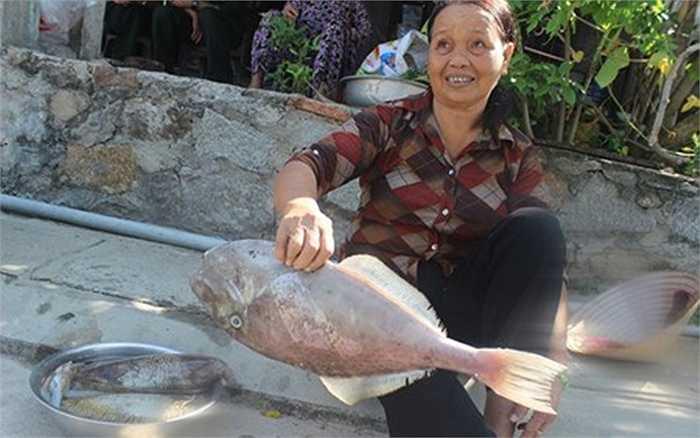 Từ lúc 4 giờ sáng, ngư dân đã hối hả mang theo cần câu và lưới ra khơi đánh bắt hải sản. Sau hơn 4 giờ lênh đênh trên biển bằng thúng chai và thuyền, những ngư dân này mang hải sản thu được về bán tại chợ Bãi Hương.
