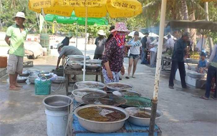 Khu chợ hải sản nằm lọt thỏm giữa núi và biển.