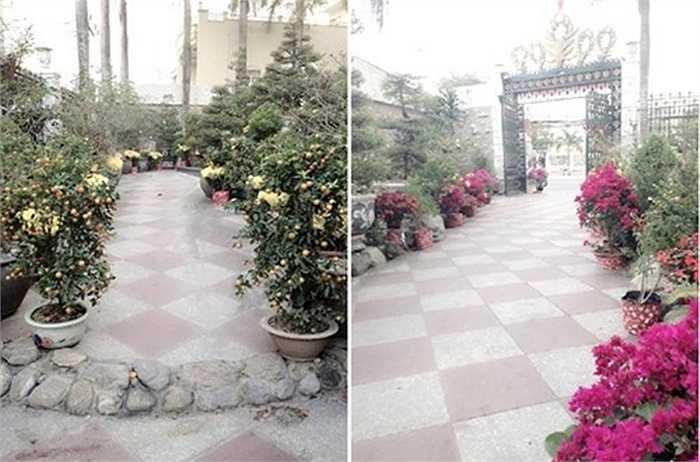 Căn biệt thự nằm trong khuôn viện rộng rãi, với nhiều loại hoa, cây cảnh.