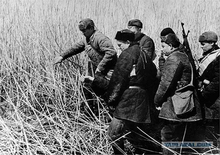 Những du kích khiêng thi thể một đồng đội của họ hi sinh trong một trận chiến năm 1941