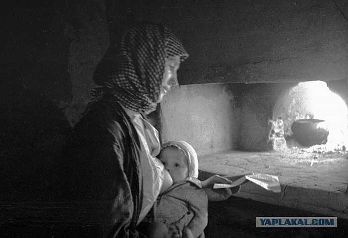 Người phụ nữ vừa cho con bú vừa đọc thư từ tiền tuyến