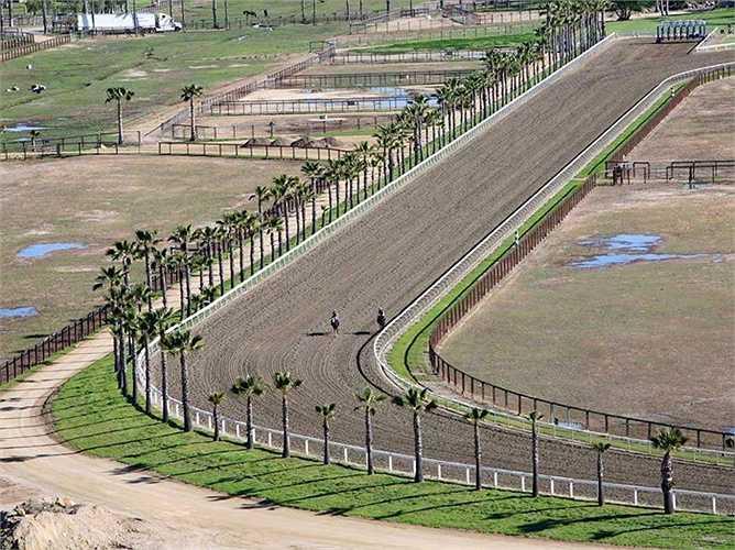 Đường đua rộng, dài cho trò đua ngựa