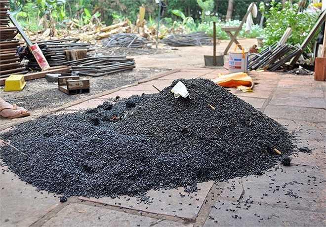 Mỗi ngày, gia đình bà Thêu gom hàng trăm kg bọ đậu đen đi thiêu hủy. 'Nhưng gom xong thì ngày mai lại xuất hiện dày đặc trở lại. Hiện vợ chồng tôi đã chuyển hết đồ đạc ra vườn ở', bà Thêu nói.