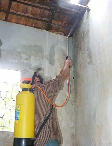 Một số hộ dân sử dụng thuốc trừ sâu có độc tố cao để tiêu diệt bọ.