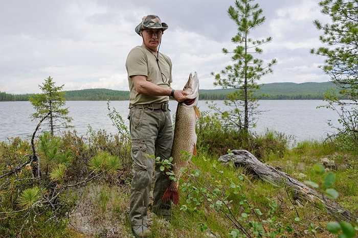 Tổng thống Nga Vladimir Putin trong một buổi câu cá ở khu vực Krasnoyarsk