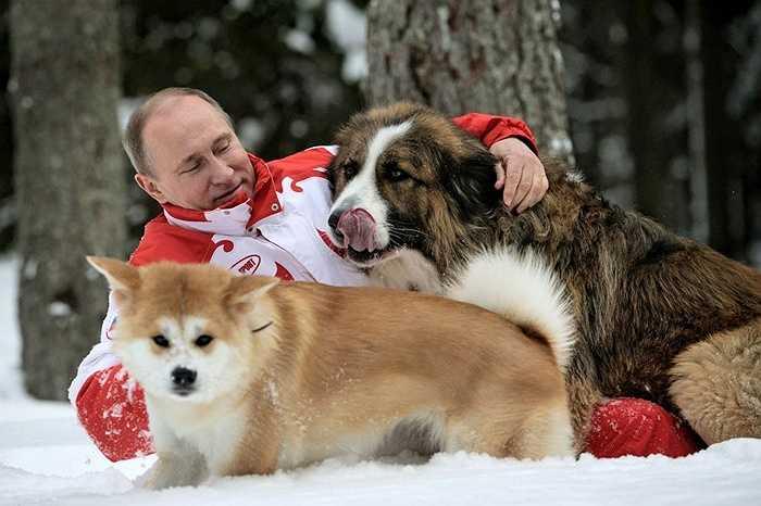 Tổng thống Nga Vladimir Putin với hai chó cưng Buffy và Yume đi dạo ở ngoại ô Matxcơva