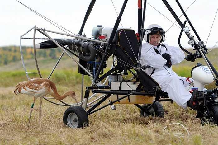 Tổng thống Vladimir Putin tham gia đề án môi trường Chuyến bay hy vọng