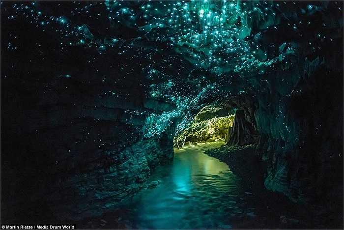 Nhiếp ảnh gia Martin Rietze, 50 tuổi, đã đi vòng quanh thế giới 40 lần và thăm quan hơn 50 quốc gia để ghi lại những khung cảnh tưởng đẹp siêu thực. Trong hình là hang Wiatomo Glowworm, New Zealand với trần hang lấp lánh như bầu trời đầy sao.