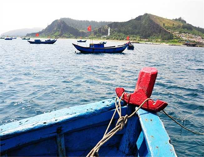Tháng 5, mùa biển cạn. Từ lúc sáng sớm, hàng trăm ngư dân tất bật ra khơi hành nghề lặn bắt ốc xà cừ ở vùng biển đảo Lý Sơn, cách bờ khoảng 2 hải lý.