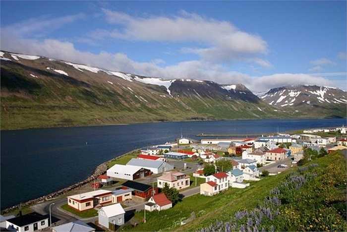 Trong đợt khủng hoảng tài chính năm 2008, một người dân Iceland đã chính tay rao bán đất nước mình trên Ebay. Người trả giá cao nhất 10 triệu bảng Anh (xấp xỉ 330 nghìn tỷ đồng) sau đó đã không thể có được món hàng của mình vì Ebay không có quy định cho phép bán cả 1 quốc gia.