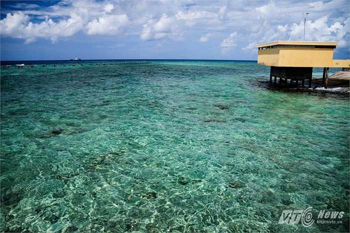 Mặt nước trong vắt với nền san hô ở điểm A đảo Đá Tây