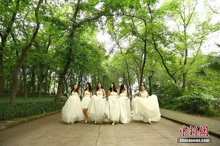 Hình ảnh 6 nữ sinh diện bộ áo cưới màu trắng lộng lẫy để tạo nên nét khác lạ trong bộ kỷ yếu tốt nghiệp.