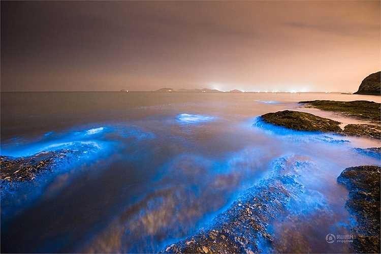 Tháng 4/2014, hiện tượng này lần đầu tiên xuất hiện ở bờ biển Đại Liên, Trung Quốc. (Nguồn: 163)