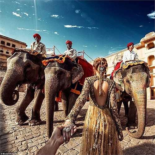 Natalia đứng trước những con voi khổng lồ tại Amer Fort, Jaipur với một bộ trang phục truyền thống Ấn Độ lộng lẫy khác.