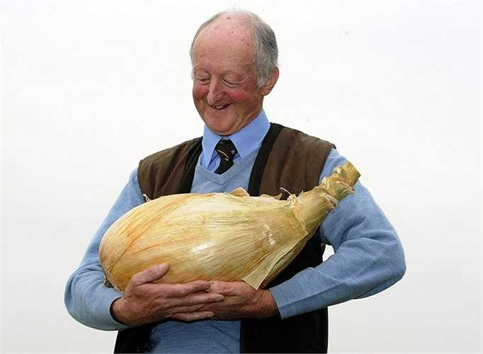 Tại miền Bắc nước Anh, Pete Glazebrook đã lập kỷ lục với củ hành tây của mình - củ hành tây nặng thế giới với 7,8 kg.
