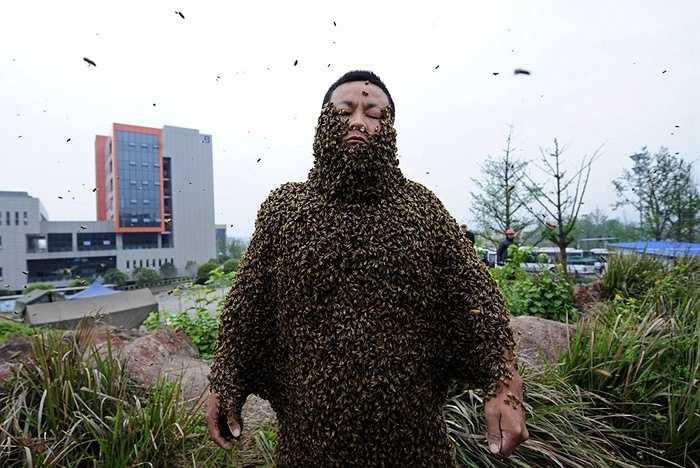She Ping tại Trung Quốc đã lập kỷ lục thế giới khi anh ta phủ toàn bộ cơ thể của mình bằng 331.000 con ong (khoảng 33kg ong) và tự phá vỡ kỷ lục trước đó của mình với 26,7 kg ong.