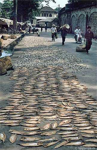 Cá khô là thực phẩm thường gặp trong bữa cơm thời bấy giờ. Hans-Peter Grumpe chụp khá nhiều quầy hàng bán cá khô và hình cảnh cá phơi đầy đường.