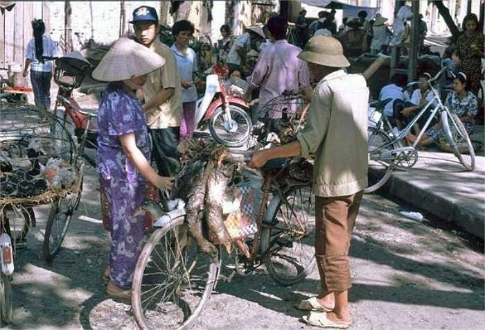 Chợ cóc những năm 1991 rất phổ biến ở Hà Nội. Người ta có thể mang đủ thứ ra chợ bán rong, từ gia cầm gà vịt tới hoa quả, thịt cá.