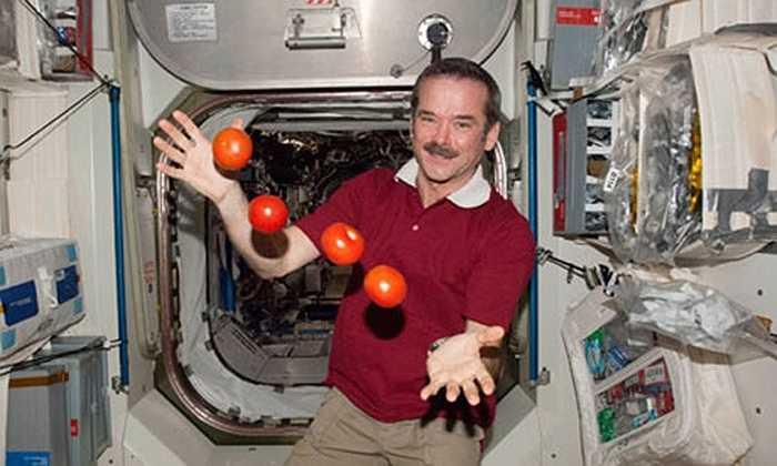 Hoa quả, đồ ăn bay lơ lửng trong khoang tàu vũ trụ do môi trường không trọng lực