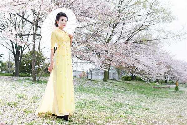 Hoa anh đào mong manh, dịu dàng, dù thoắt nở, thoắt tàn nhưng vẻ đẹp tinh tế và ngắn ngủi của loài hoa đó cũng đủ để trở thành loại hoa tượng trưng cho văn hóa và triết lý sống của người Nhật Bản