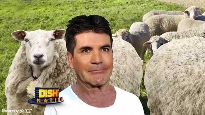 Nghe có vẻ kỳ lạ nhưng nhau thai cừu lại thực sự có khả năng làm trẻ hóa làn da của bạn. Trong nhau thai cừu được chứng minh có chất sắt, protein để giúp chống lão hóa da.