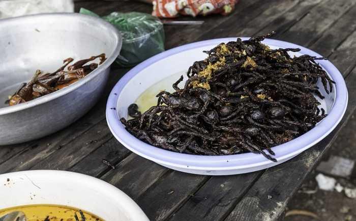 2. Nhện Tarantula. Rất nhiều người phát sợ khi nhìn thấy một con nhện. Tuy nhiên, đối với người Campuchia, họ rất thích món ăn nhện tarantula: rán, nước hoặc tẩm bột. tại đây, bạn có thể đặt nhện tarantula làm lọc bỏ sẵn nọc và cả răng nanh để thoải mái chế biến theo cách của bản thân