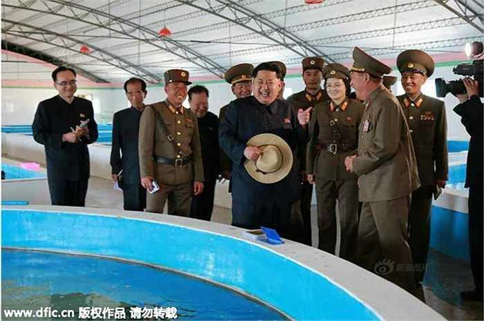 Trước đó, ông Kim được cho là đã nổi cáu khi đến thăm trang trại nuôi rùa