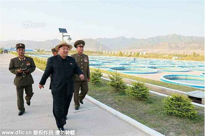 Sĩ quan Triều Tiên tháp tùng ông Kim