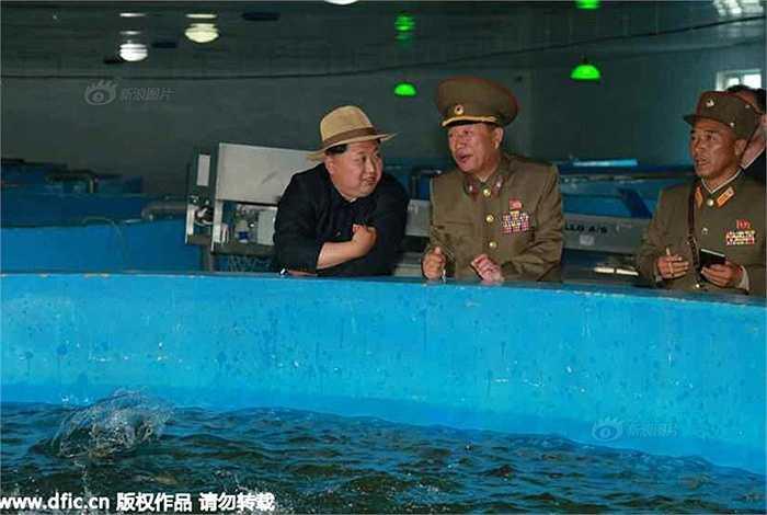 Ông Kim bàn bạc với một sỹ quan cạnh bể nuôi cá