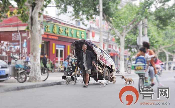 Trên dường đi khắp nơi tìm vợ, ông găp mấy chú chó đi hoang và dắt theo xe