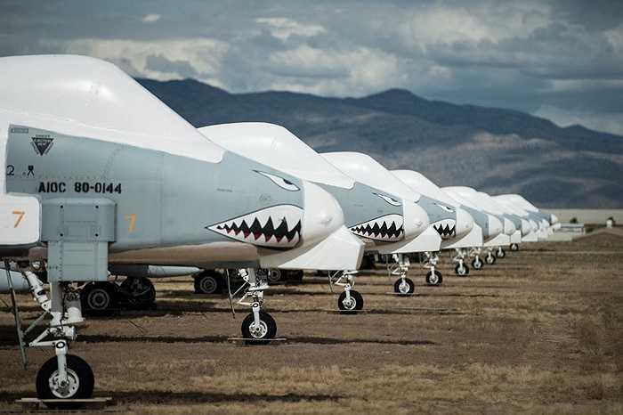 Dàn chiến cơ A-10 Thunderbolt II đã nghỉ hưu