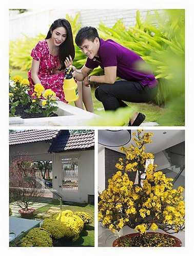 Hình ảnh hạnh phúc của cặp đôi bên vườn cây cúc vàng, mai vàng, lại có thêm cả cây đào thắm trong dịp Tết.